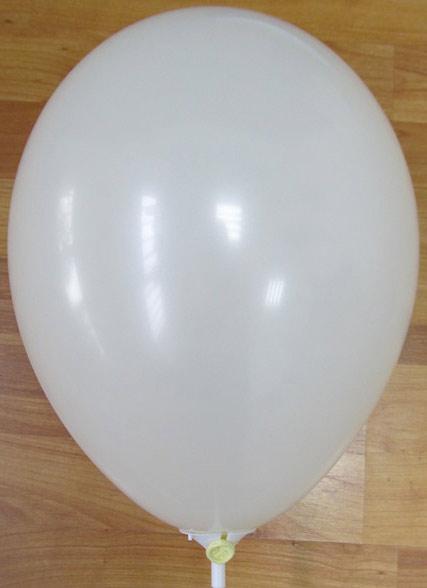 балони екрю / шампанско 59